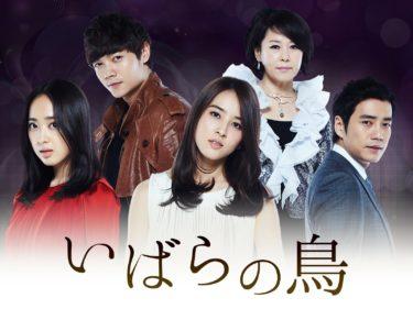 【いばらの鳥】韓国ドラマ動画をフル無料視聴!全20話を最終回まで見放題