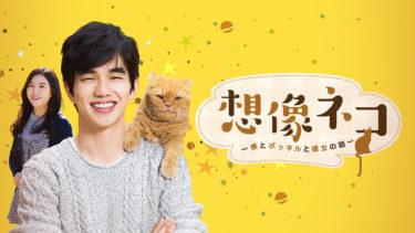 【想像ネコ~僕とポッキルと彼女の話~】韓国ドラマ動画をフル無料視聴!全8話・2話以降も日本語字幕で見放題!